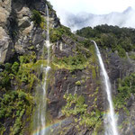 Hundreds and hundreds of waterfalls in Milford Sound