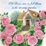 オールドローズの咲く庭