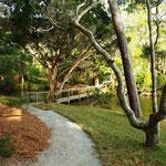 Path to Lagoon bridge - summer
