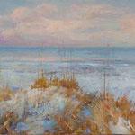 South Carolina dunes