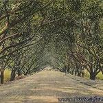 Bombay-Poona Road