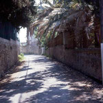The street that led to Villa Caldana
