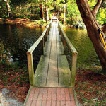 Lagoon bridge & path to the Library - summer
