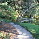 Path to Lagoon bridge - winter