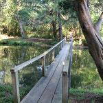 Lagoon bridge - winter