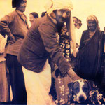 India - late 1930s : Gaimai standing on the far left of Meher Baba and his dog - Chum