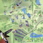 Present day garden map