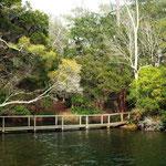 Lagoon bridge from the boathouse
