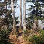 Der Weg zum Baalstein