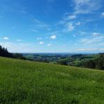 Blick nach Norden ins Alpenvorland