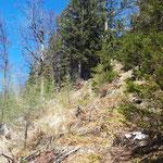 Wegverlauf zwischen Durchgang und Durchgangkogel
