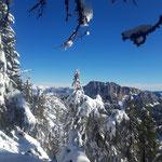 Blick hin zum Gipfel - der Stubwieswipfel im Hintergrund