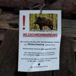 Warnung vor Wildschweinen