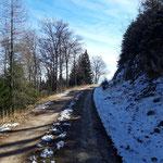 Wegverlauf entlang der Forststraße