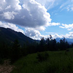 Hinter uns ist das Sengsengebirge zu sehen
