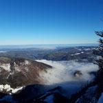 Blick vom Schoberstein ins Alpenvorland