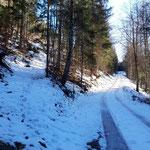 Wegverlauf entlang der Forststraße - an dieser Stelle zweigt der Waldpfad ab