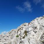 Nun beginnt der schönste Abschnitt - die karge Landschaft mit tollen Felsformationen und dem wunderschönen Gipfelkreuz