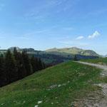 Zunächst geht es über die Forststraße - der Blick über die Schulter fällt auf Windkogel, Thorhöhe und Sparber