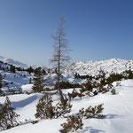 Und hier noch ein paar Landschaftseindrücke von unserem letzten Wegabschnitt - was für ein Traum in weiß!