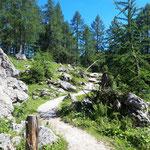 Über den idyllischen Waldweg durch den Kessel zurück zur Gipfelstation
