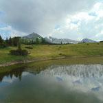 Am Plateau gibt es einige kleine Teiche, an diesen vorbei geht es auf den vor uns aufragenden Kleinmölbing zu