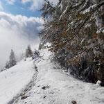 Der letzte Abschnitt am Kamm kurz vor dem letzten Gipfelanstieg