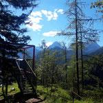 "Aussichtsplattform am ""Gipfel"""