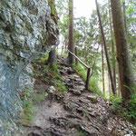 Auf geht's zum Schoberstein Gipfel