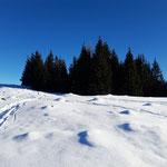 Retour durch die Schneelandschaft