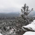 Ausblick vom Dreisesselberg über Österreich, Deutschland und Tschechien