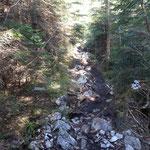 Von der Forststraße geht es auf einen steinigen Pfad