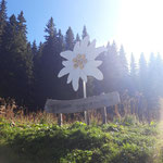 Ausgangspunkt Kolm-Saigurn