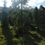 Mit der Bergbahn zur Graukogelhütte (unsere Ziele sind schon zu sehen,  links Hüttenkogel, rechts Graukogel)