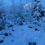 Wegverlauf im Schnee
