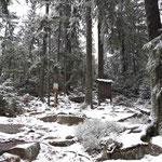 Weg zum Bärenstein