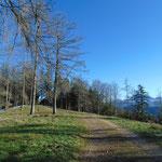 Wegverlauf zum Gipfel
