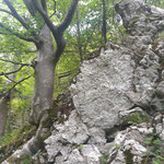 Felsformationen am Wegrand