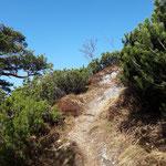 Hier einige Landschaftseindrücke vom Aufstieg