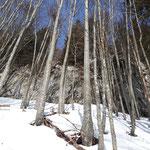 Nachdem wir den steilen Waldweg hinter uns gebracht hatten, erreichten wir die Felswand