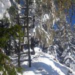 Gleich erreichen wir den Grat hin zum Gipfel