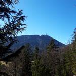 Ausblick auf den Gaisberg