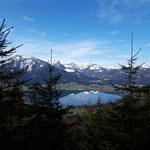 Ausblick über den Wolfgangsee, die Bleckwand und hinein in die Osterhorngruppe