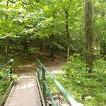 Brücke am Wegverlauf