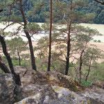 Blick vom Steinerfelsen auf die Donau