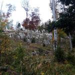 Schließlich weicht der Wald einer kargeren und felsigen Landschaft