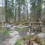 Auch wenn es auf den Fotos wetterbedingt teilweise relativ düster wirkt - mir hat dieser Teil des Weges durch den Wald richtig gut gefallen