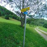 Hier zweigt unser Weg von der Forststraße ab
