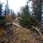 Nach der Gabelung führt dieser Waldweg weiter zum Dürren Eck