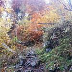 Wegverlauf bei den wunderschönen Herbstfarben